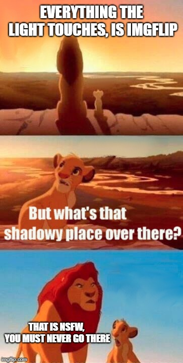 Simba Shadowy Place Meme | EVERYTHING THE LIGHT TOUCHES, IS IMGFLIP THAT IS NSFW, YOU MUST NEVER GO THERE | image tagged in memes,simba shadowy place | made w/ Imgflip meme maker