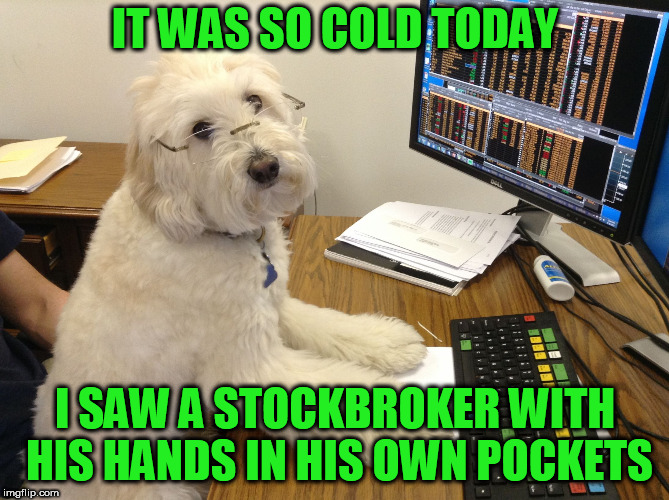 IT WAS SO COLD TODAY I SAW A STOCKBROKER WITH HIS HANDS IN HIS OWN POCKETS | image tagged in stock broker dog | made w/ Imgflip meme maker