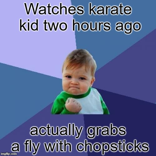 Success Kid Meme | Watches karate kid two hours ago actually grabs a fly with chopsticks | image tagged in memes,success kid | made w/ Imgflip meme maker