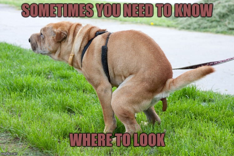 SOMETIMES YOU NEED TO KNOW WHERE TO LOOK | made w/ Imgflip meme maker
