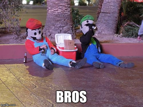 mario and luigi drunk | BROS | image tagged in mario and luigi drunk | made w/ Imgflip meme maker