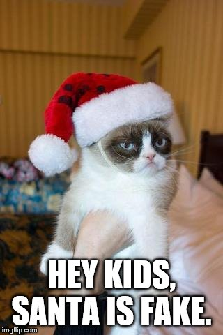 Grumpy Cat Christmas | HEY KIDS, SANTA IS FAKE. | image tagged in memes,grumpy cat christmas,grumpy cat | made w/ Imgflip meme maker
