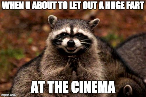 Evil Plotting Raccoon | WHEN U ABOUT TO LET OUT A HUGE FART AT THE CINEMA | image tagged in memes,evil plotting raccoon | made w/ Imgflip meme maker