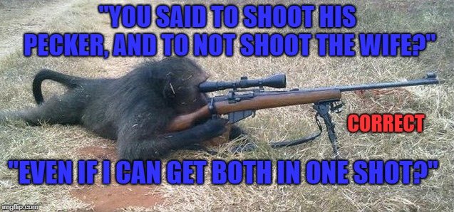 "The Friendly neighborhood sniper monkey, doin' what sniper monkeys do... | ""YOU SAID TO SHOOT HIS PECKER, AND TO NOT SHOOT THE WIFE?"" CORRECT ""EVEN IF I CAN GET BOTH IN ONE SHOT?"" 