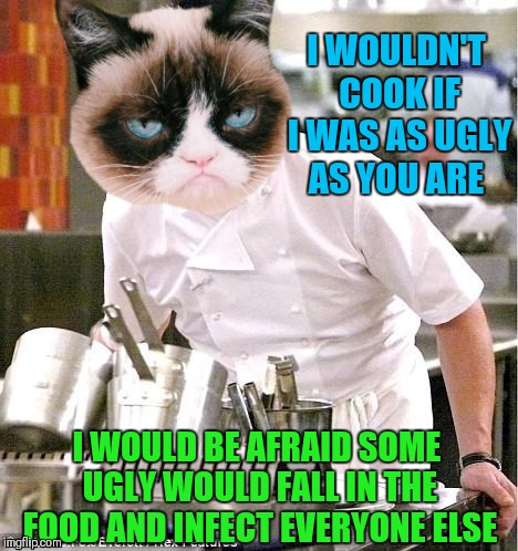 Chef Gordon Grumpy | I WOULDN'T COOK IF I WAS AS UGLY AS YOU ARE I WOULD BE AFRAID SOME UGLY WOULD FALL IN THE FOOD AND INFECT EVERYONE ELSE | image tagged in memes,funny,grumpy cat,chef gordon ramsay,cooking,food | made w/ Imgflip meme maker