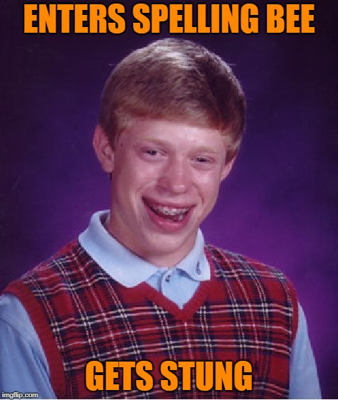 Ouch | ENTERS SPELLING BEE GETS STUNG | image tagged in memes,bad luck brian | made w/ Imgflip meme maker