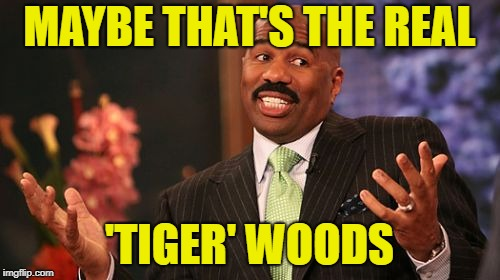 Steve Harvey Meme | MAYBE THAT'S THE REAL 'TIGER' WOODS | image tagged in memes,steve harvey | made w/ Imgflip meme maker