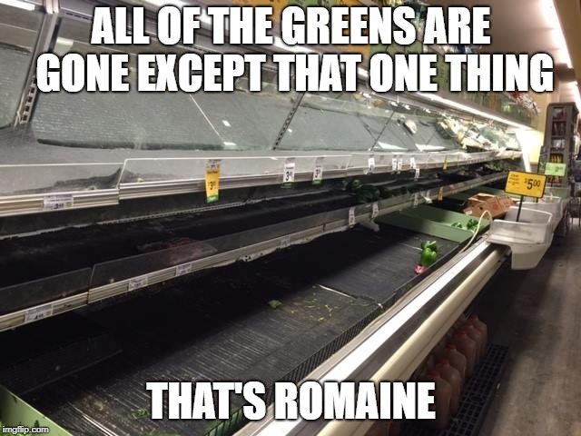 ALL OF THE GREENS ARE GONE EXCEPT THAT ONE THING THAT'S ROMAINE | image tagged in empty grocery store | made w/ Imgflip meme maker