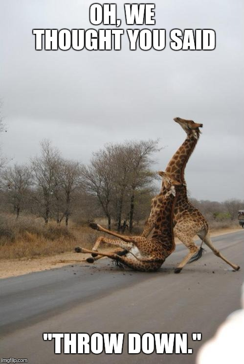 "Falling Giraffe | OH, WE THOUGHT YOU SAID ""THROW DOWN."" 