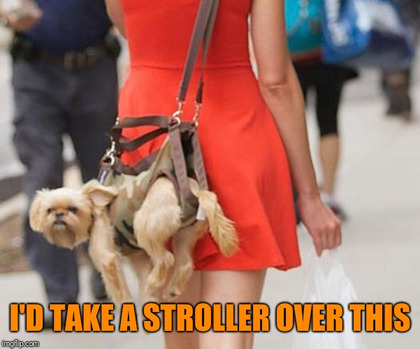 I'D TAKE A STROLLER OVER THIS | made w/ Imgflip meme maker