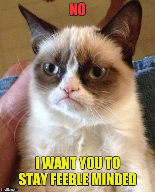 Grumpy Cat Meme | NO I WANT YOU TO STAY FEEBLE MINDED | image tagged in memes,grumpy cat | made w/ Imgflip meme maker
