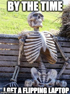 Waiting Skeleton Meme | BY THE TIME I GET A FLIPPING LAPTOP | image tagged in memes,waiting skeleton | made w/ Imgflip meme maker