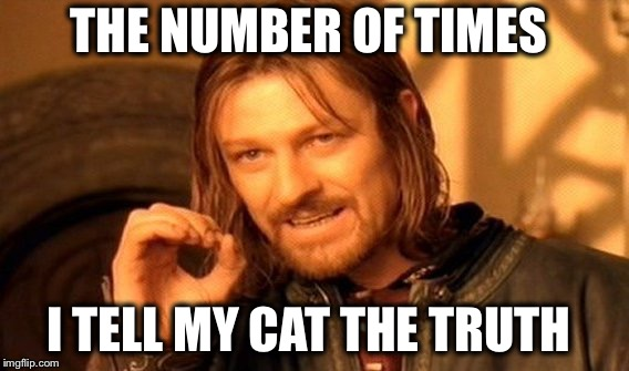 One Does Not Simply Meme | THE NUMBER OF TIMES I TELL MY CAT THE TRUTH | image tagged in memes,one does not simply | made w/ Imgflip meme maker