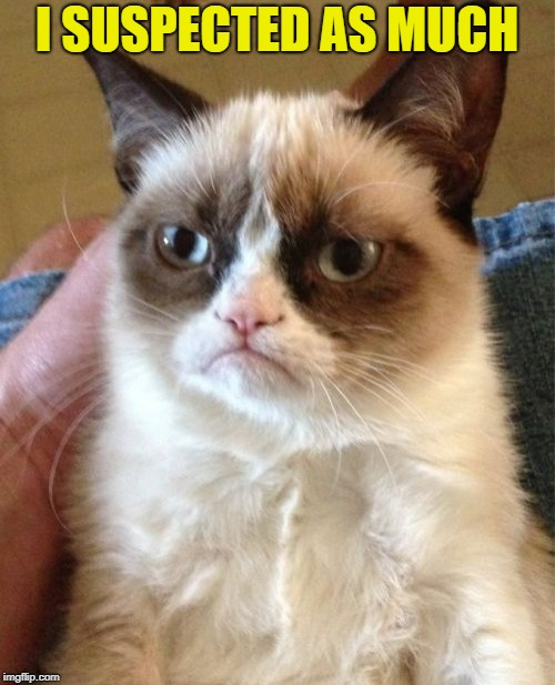 Grumpy Cat Meme | I SUSPECTED AS MUCH | image tagged in memes,grumpy cat | made w/ Imgflip meme maker