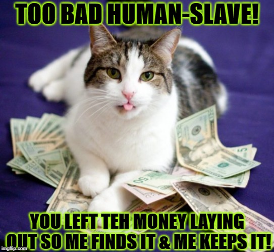 ME KEEPS IT | TOO BAD HUMAN-SLAVE! YOU LEFT TEH MONEY LAYING OUT SO ME FINDS IT & ME KEEPS IT! | image tagged in me keeps it | made w/ Imgflip meme maker