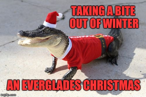 Bring your pets, Santa Gator loves them! | TAKING A BITE OUT OF WINTER AN EVERGLADES CHRISTMAS | image tagged in santa gator,memes,merry christmas,happy holidays,winter,meanwhile in florida | made w/ Imgflip meme maker