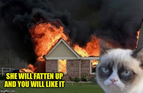 Burn Kitty Meme | SHE WILL FATTEN UP AND YOU WILL LIKE IT | image tagged in memes,burn kitty,grumpy cat | made w/ Imgflip meme maker