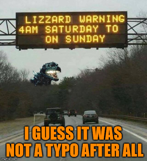 Go, Go Godzilla | I GUESS IT WAS NOT A TYPO AFTER ALL | image tagged in memes,typo,funny,godzilla,warning sign | made w/ Imgflip meme maker