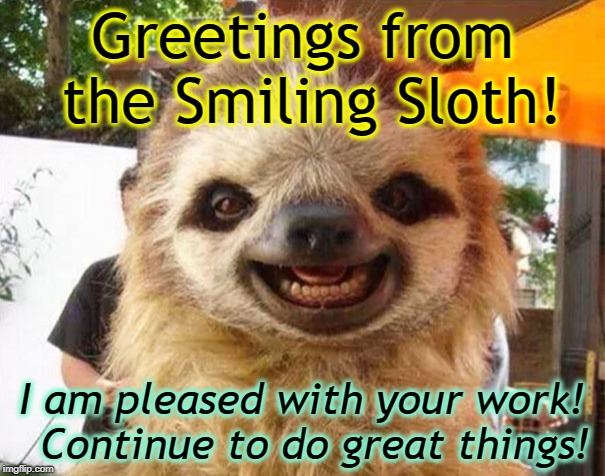 Greetings from the Smiling Sloth! I am pleased with your work!  Continue to do great things! | image tagged in picture day sloth | made w/ Imgflip meme maker