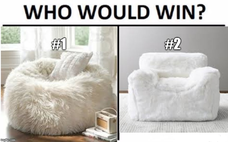My sister and I got into an argument over which of these is actually a bean bag chair. Comment down below which you think it is. | #1 #2 | image tagged in memes,who would win,bean bag chair | made w/ Imgflip meme maker