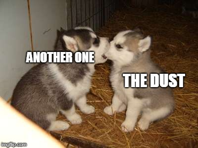 Cute Puppies | ANOTHER ONE THE DUST | image tagged in memes,cute puppies | made w/ Imgflip meme maker