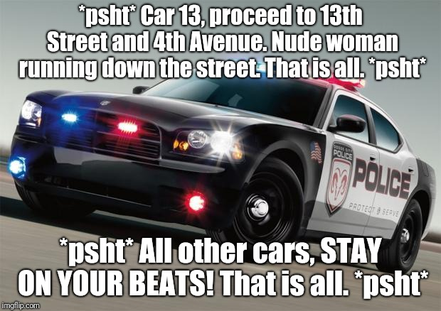 Sometimes, you gotta be sure... | *psht* Car 13, proceed to 13th Street and 4th Avenue. Nude woman running down the street. That is all. *psht* *psht* All other cars, STAY ON | image tagged in police car,memes,nudes,nudity,nudist,true crime | made w/ Imgflip meme maker