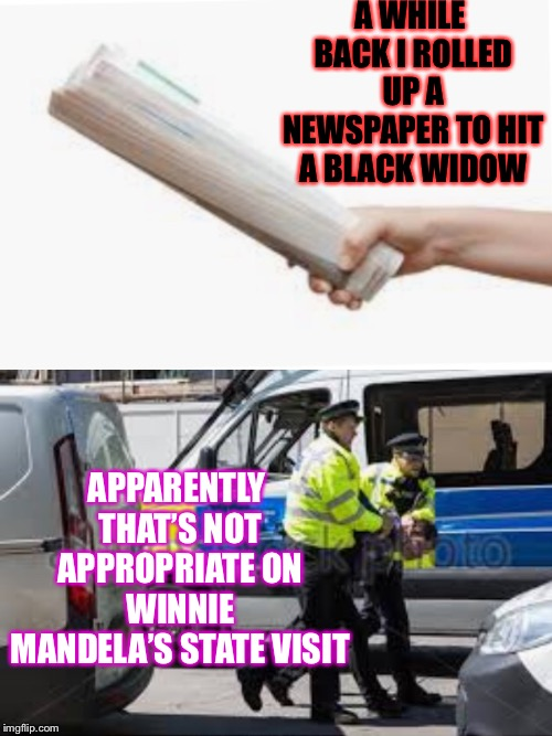 African't ! | A WHILE BACK I ROLLED UP A NEWSPAPER TO HIT A BLACK WIDOW APPARENTLY THAT'S NOT APPROPRIATE ON WINNIE MANDELA'S STATE VISIT | image tagged in old joke,winnie mandela,spider,arrested | made w/ Imgflip meme maker
