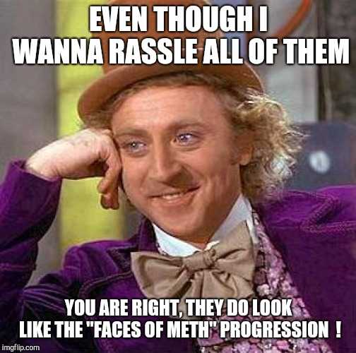 "Creepy Condescending Wonka Meme | EVEN THOUGH I WANNA RASSLE ALL OF THEM YOU ARE RIGHT, THEY DO LOOK LIKE THE ""FACES OF METH"" PROGRESSION  ! 