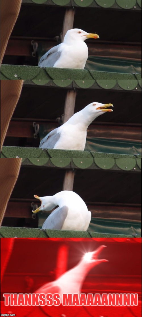 THANKSSS MAAAAANNNN | image tagged in memes,inhaling seagull | made w/ Imgflip meme maker