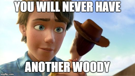 This will ruin your childhood | YOU WILL NEVER HAVE ANOTHER WOODY | image tagged in toy story,dumb,memes | made w/ Imgflip meme maker