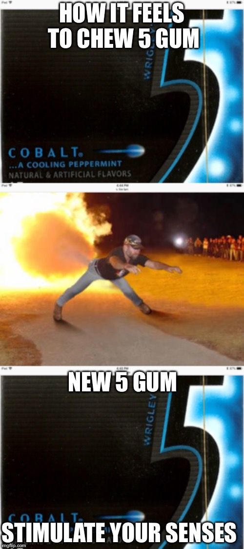 HOW IT FEELS TO CHEW 5 GUM NEW 5 GUM STIMULATE YOUR SENSES | image tagged in how it feels to chew 5 gum | made w/ Imgflip meme maker
