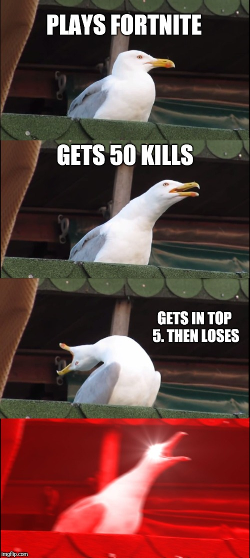 Inhaling Seagull Meme | PLAYS FORTNITE GETS 50 KILLS GETS IN TOP 5. THEN LOSES | image tagged in memes,inhaling seagull | made w/ Imgflip meme maker