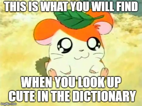 Hamtaro |  THIS IS WHAT YOU WILL FIND; WHEN YOU LOOK UP CUTE IN THE DICTIONARY | image tagged in memes,hamtaro | made w/ Imgflip meme maker