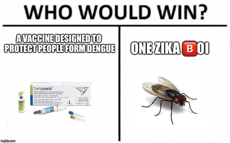 Who Would Win? | A VACCINE DESIGNED TO PROTECT PEOPLE FORM DENGUE ONE ZIKA  | image tagged in memes,who would win,vaccine,zika virus,flies | made w/ Imgflip meme maker