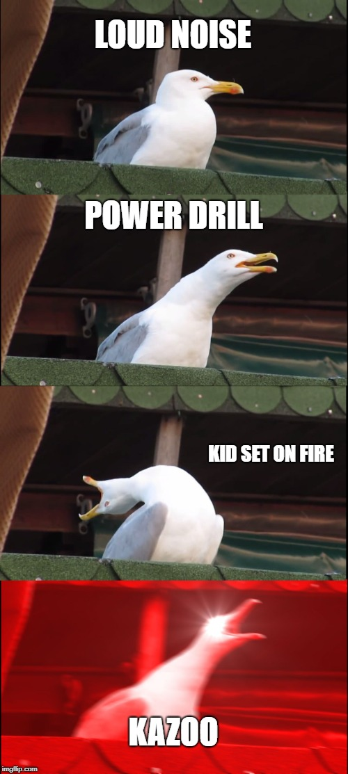 Inhaling Seagull Meme | LOUD NOISE POWER DRILL KID SET ON FIRE KAZOO | image tagged in memes,inhaling seagull | made w/ Imgflip meme maker