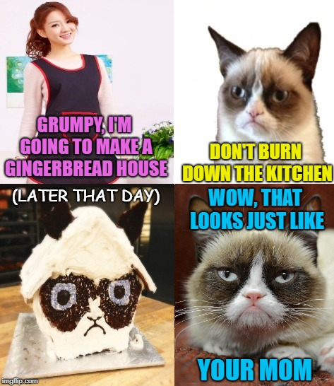 Resemblance  | GRUMPY, I'M GOING TO MAKE A GINGERBREAD HOUSE DON'T BURN DOWN THE KITCHEN (LATER THAT DAY) WOW, THAT LOOKS JUST LIKE YOUR MOM | image tagged in funny memes,cat,grumpy,gingerbread,holidays,cooking | made w/ Imgflip meme maker