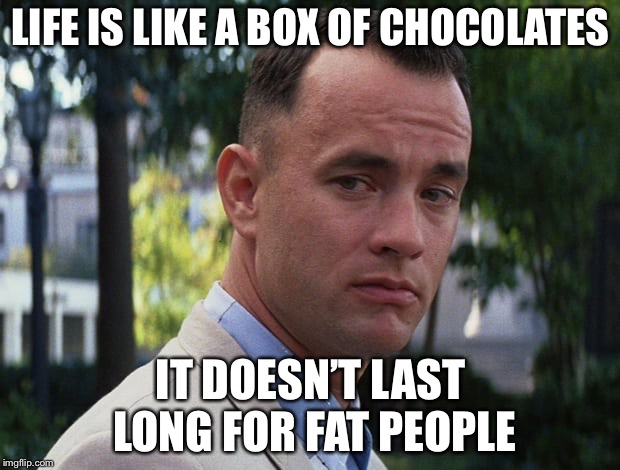 Life is like a box of chocolates | LIFE IS LIKE A BOX OF CHOCOLATES IT DOESN'T LAST LONG FOR FAT PEOPLE | image tagged in life is like a box of chocolates | made w/ Imgflip meme maker
