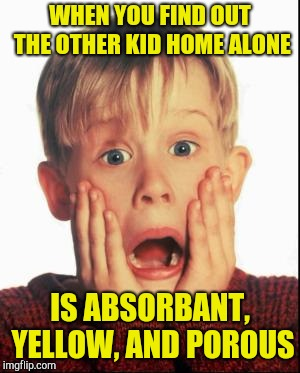 Home Alone Kid  | WHEN YOU FIND OUT THE OTHER KID HOME ALONE IS ABSORBANT, YELLOW, AND POROUS | image tagged in home alone kid | made w/ Imgflip meme maker