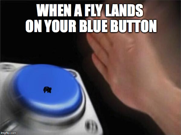 That's A Fly? | WHEN A FLY LANDS ON YOUR BLUE BUTTON | image tagged in memes,blank nut button,flies,button,shoo fly,socks | made w/ Imgflip meme maker