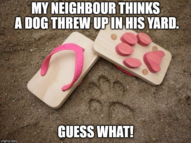 MY NEIGHBOUR THINKS A DOG THREW UP IN HIS YARD. GUESS WHAT! | image tagged in dog barf | made w/ Imgflip meme maker