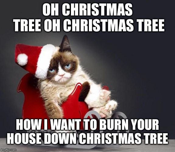 Grumpy Cat Christmas HD |  OH CHRISTMAS TREE OH CHRISTMAS TREE; HOW I WANT TO BURN YOUR HOUSE DOWN CHRISTMAS TREE | image tagged in grumpy cat christmas hd | made w/ Imgflip meme maker