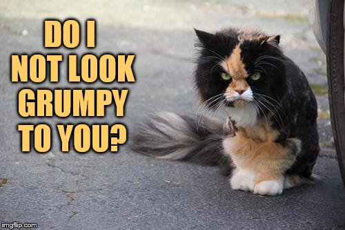 DO I NOT LOOK GRUMPY TO YOU? | made w/ Imgflip meme maker