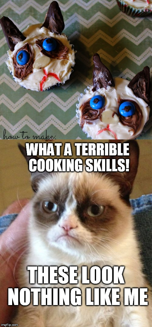 WHAT A TERRIBLE COOKING SKILLS! THESE LOOK NOTHING LIKE ME | image tagged in memes,grumpy cat | made w/ Imgflip meme maker