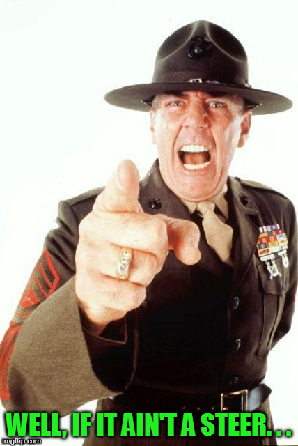 R Lee Ermey | WELL, IF IT AIN'T A STEER. . . | image tagged in r lee ermey | made w/ Imgflip meme maker