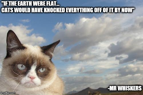 "Purrfectly Obvious! | ""IF THE EARTH WERE FLAT...              CATS WOULD HAVE KNOCKED EVERYTHING OFF OF IT BY NOW"" -MR WHISKERS 