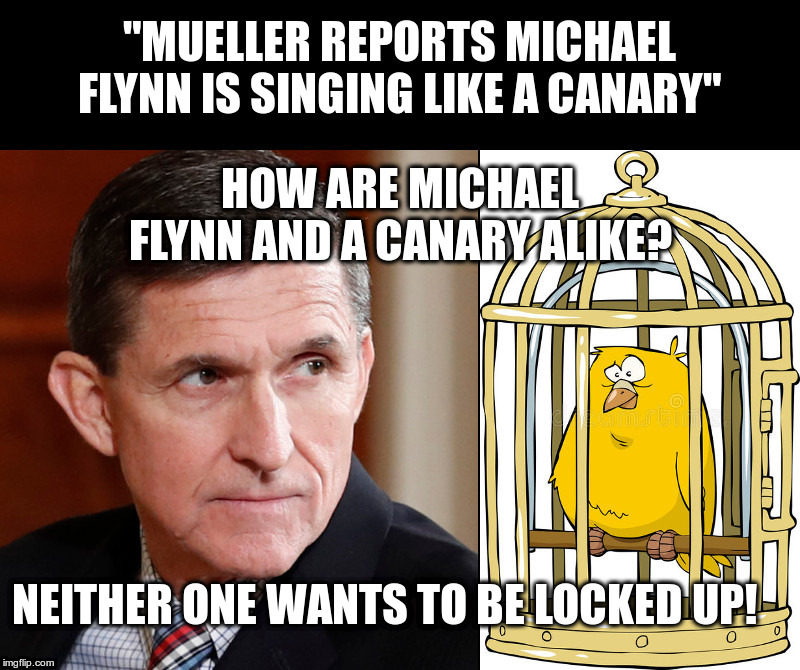 What Would You Do? | image tagged in michael flynn,donald trump,robert mueller,threatening witnesses,witch hunt | made w/ Imgflip meme maker