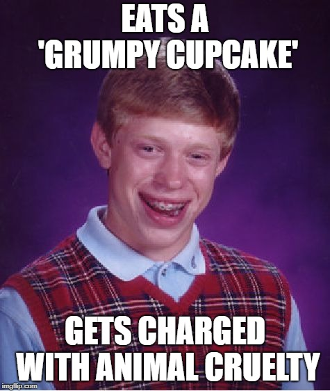 Bad Luck Brian Meme | EATS A 'GRUMPY CUPCAKE' GETS CHARGED WITH ANIMAL CRUELTY | image tagged in memes,bad luck brian | made w/ Imgflip meme maker