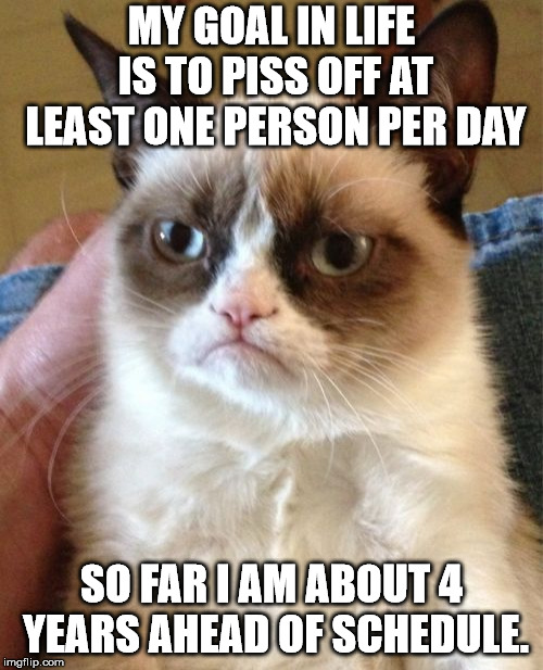 Grumpy Cat Meme | MY GOAL IN LIFE IS TO PISS OFF AT LEAST ONE PERSON PER DAY SO FAR I AM ABOUT 4 YEARS AHEAD OF SCHEDULE. | image tagged in memes,grumpy cat | made w/ Imgflip meme maker