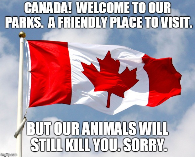 canadian flag | CANADA!  WELCOME TO OUR PARKS.  A FRIENDLY PLACE TO VISIT. BUT OUR ANIMALS WILL STILL KILL YOU. SORRY. | image tagged in canadian flag,AdviceAnimals | made w/ Imgflip meme maker