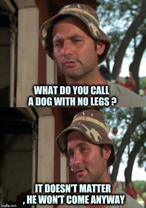 Bill Murray bad joke | WHAT DO YOU CALL A DOG WITH NO LEGS ? IT DOESN'T MATTER , HE WON'T COME ANYWAY | image tagged in bill murray bad joke | made w/ Imgflip meme maker